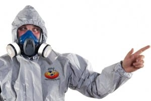 Affordable pest control services in Hamilton, Toronto & Mississauga Areas